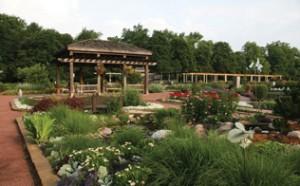 Idea-Garden